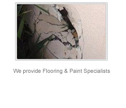 flooring and painting after auto accident